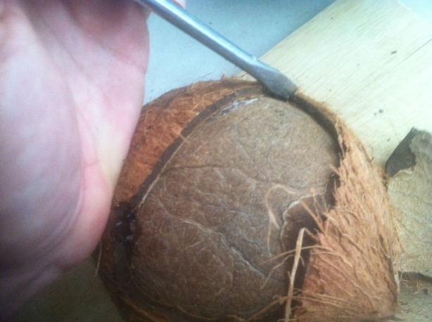 Cracking Coconut (16)